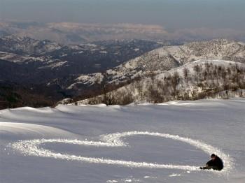 Love Message -559-