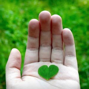 Love Message -2535-